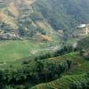 La vallée du riz – Viêt Nam
