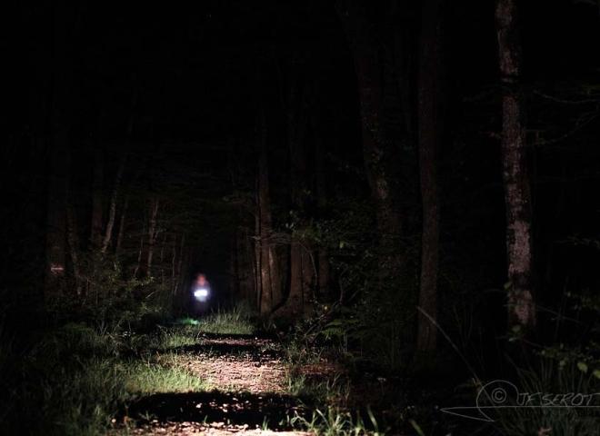 Prospection nocturne – France