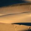 Dunes, Vallée de la mort – Californie