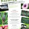 La Finca Zopilote : Vivre en harmonie avec la nature grâce à la permaculture