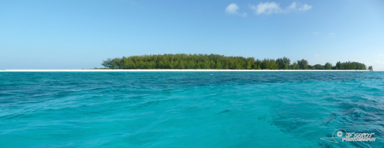 Plongée en océan indien – Tanzanie