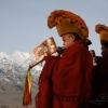 Trompette tibétaine, Ladakh – Inde