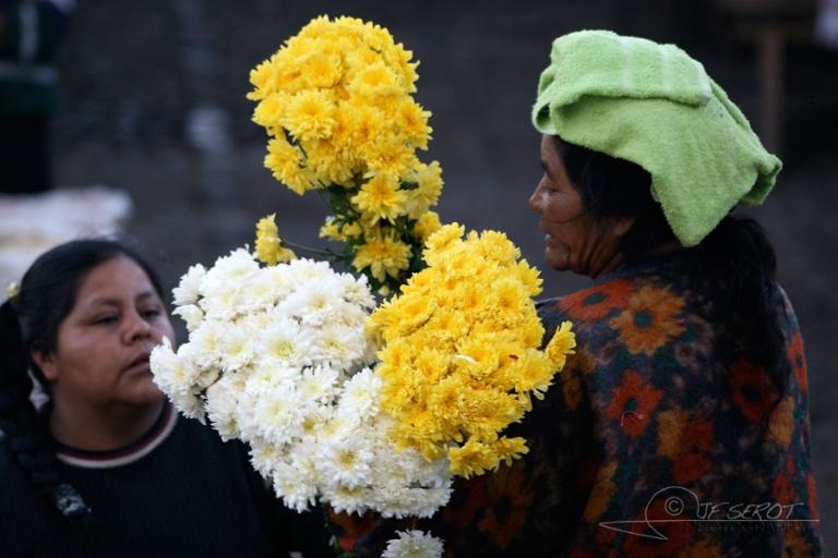 Fleuriste – Guatemala