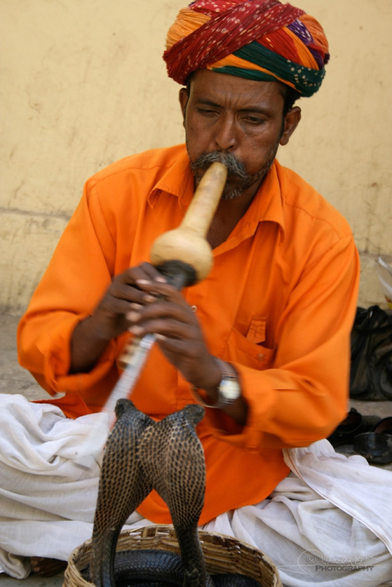 Charmeur – Inde