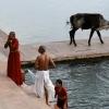 Se laver aux Ghâts – Inde