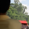 Rêverie – Viêt Nam