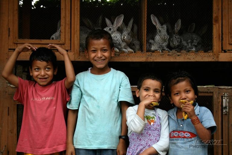 Lapins – Népal