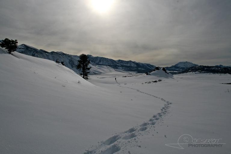 PIster, Sierra Nevada – Etats-Unis