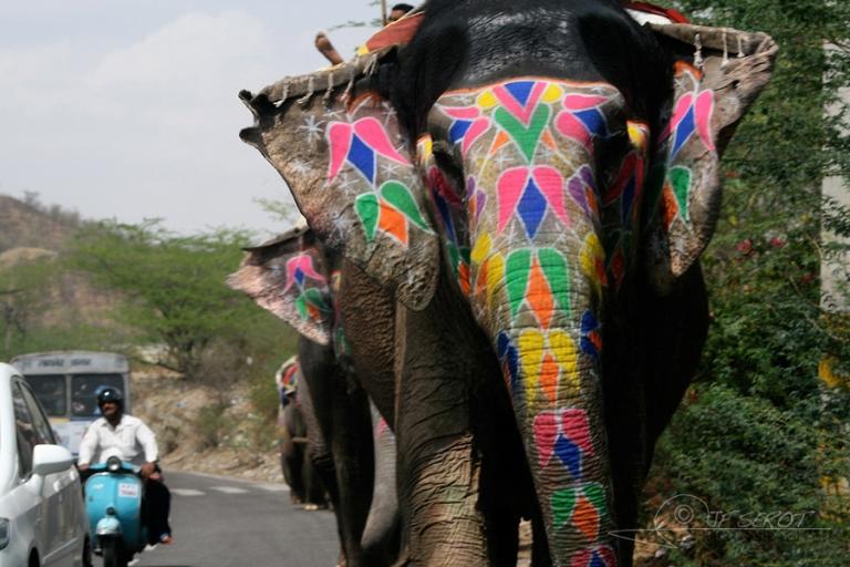 Ganesh et cornac / Inde
