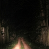 Chemin nocturne – France