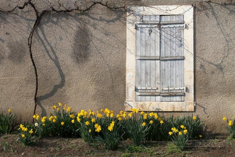 Maison de campagne – France