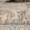 Mosaïque de la maison de Vénus à Volubilis – Maroc