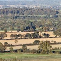 Préconisation de gestion des espaces naturels