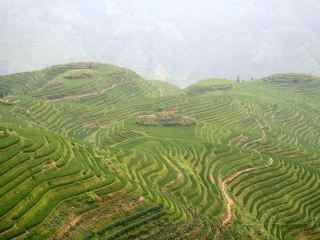 Sentier à Longsheng- Chine