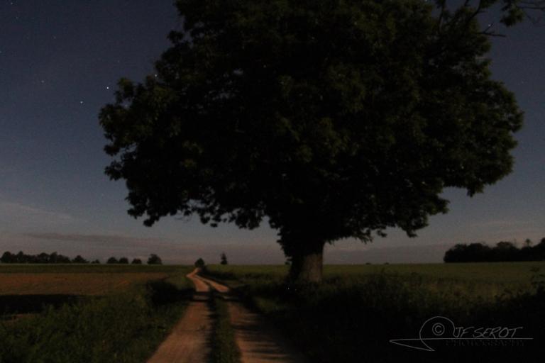 Balade nocturne – France