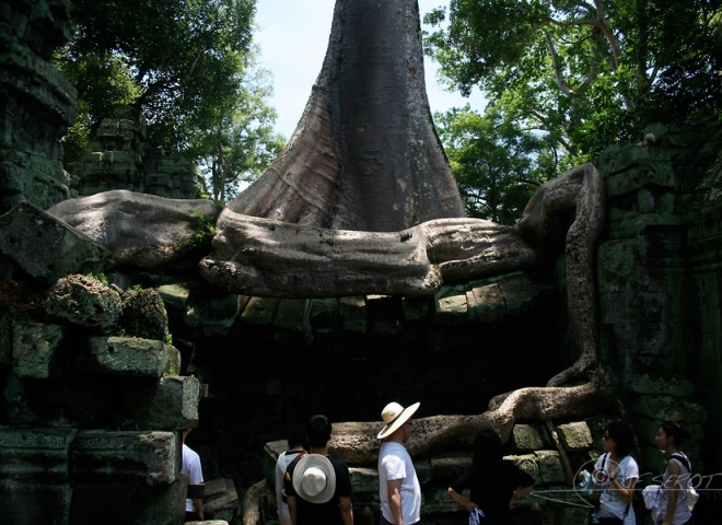 S'enraciner – Cambodge