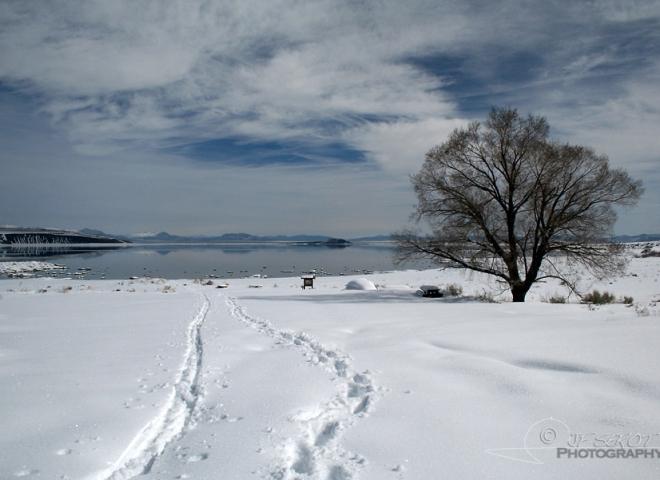 Mono Lake – Californie