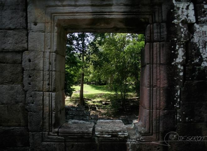 Vue sur arbre – Cambodge
