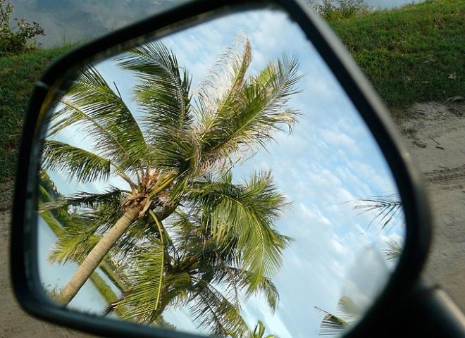 Cocotier rétro – Viêt Nam