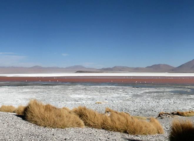 Laguna Colorada 2 – Bolivie