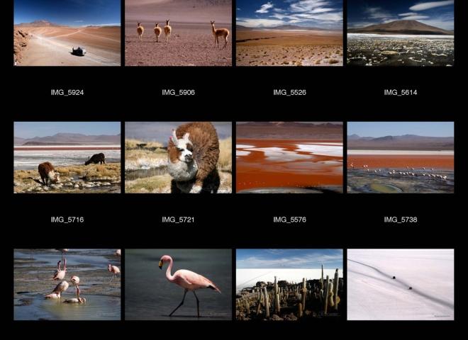 Salar d'Uyuni, Sud Lipez – Bolivie