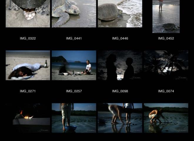 Playa de la Flor et les tortues Paslama – Nicaragua
