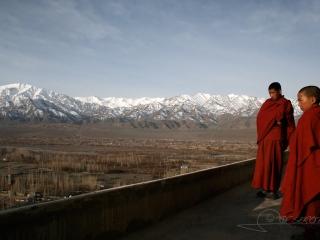 Jeunes moines, Ladakh – Inde
