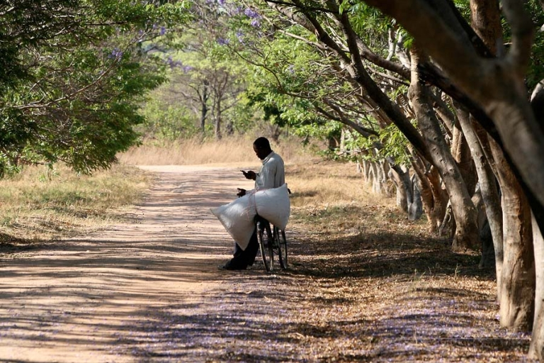 Consulter son téléphone – Zambie