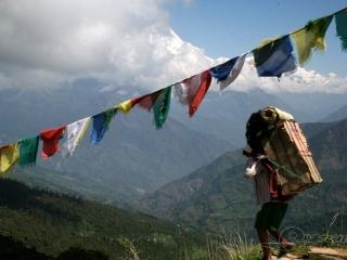 Porteur – Népal