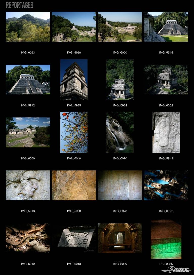 Cité maya de Palenque – Mexique