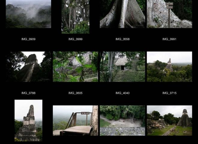 Tikal – Guatemala