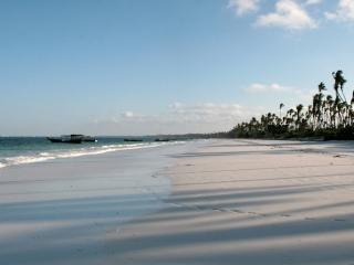 Plage de Zanzibar – Tanzanie