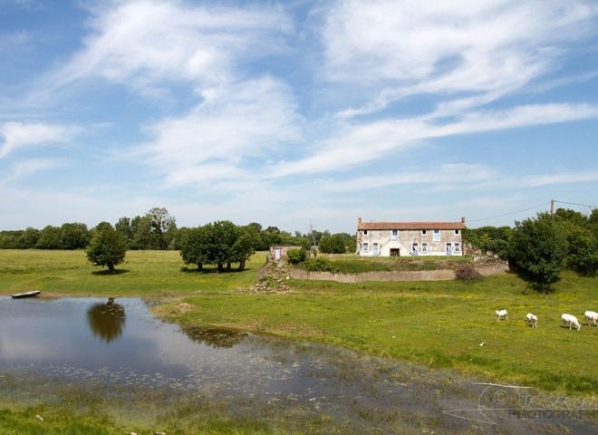 Boire de Loire Angevine – France